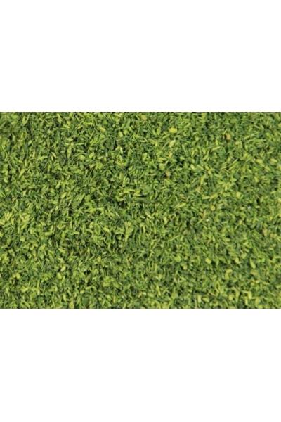 R-LAND 41686 Имитация листвы зеленый 500мл H0/TT/N/Z